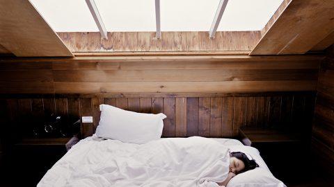 Spánkové cykly